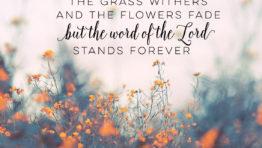 Bible Verse Desktop Wallpaper Wp4402842
