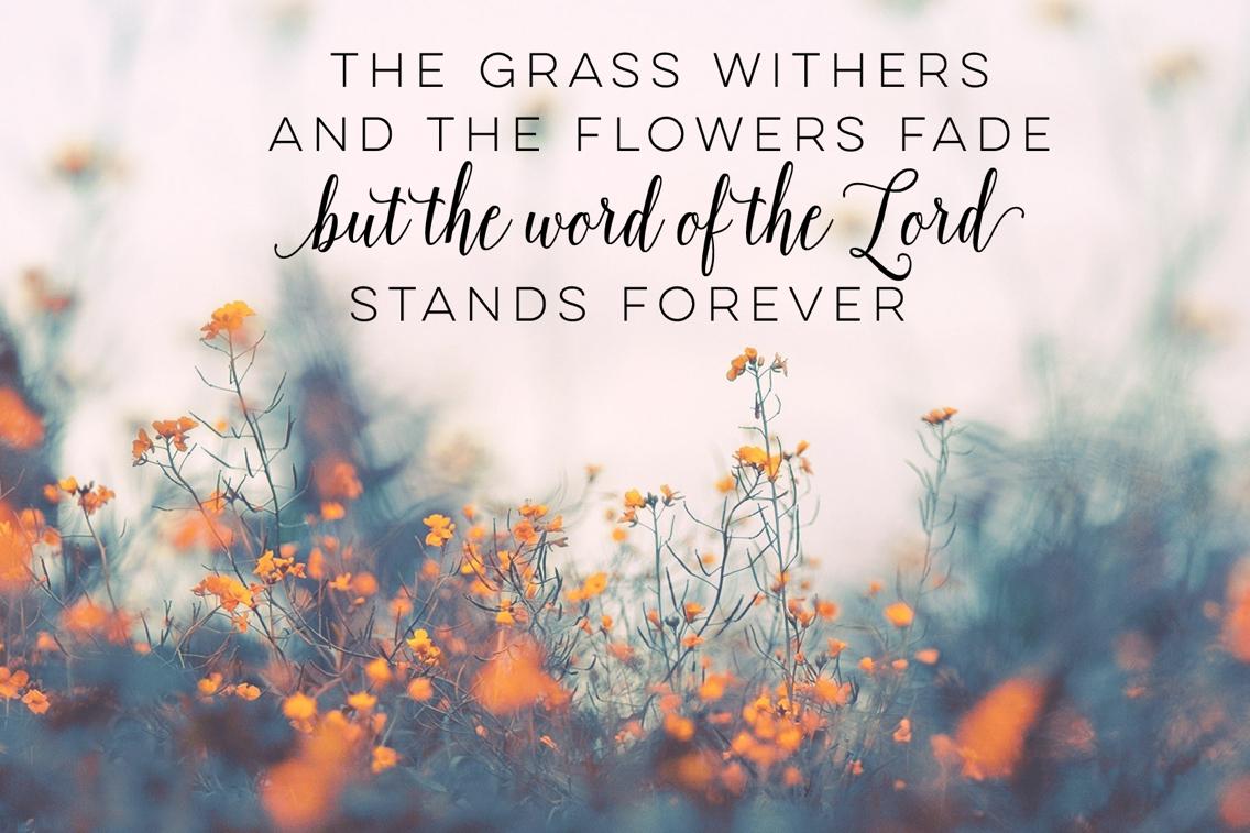 Bible verse desktop wallpaper wp4402842 download free hd wallpapers - Full hd bible wallpapers ...