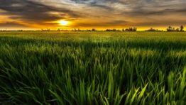 Nature Wallpaper Hd Natural Landscapes Sky