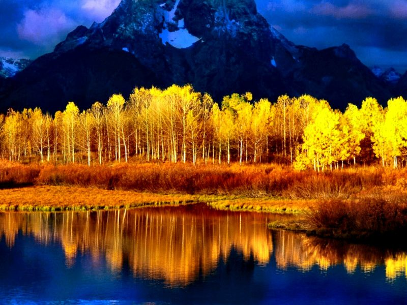 Beautiful Scenery Fall Hd Wallpaper Mountain River And Forest