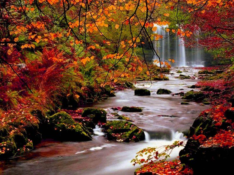 Fall Hd Wallpaper River Nature Download