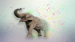 Elephant Paint Wallpaper Hd