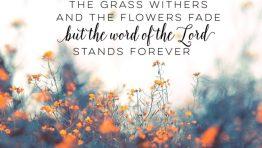 Bible Verse Desktop Wallpaper Download Free Hd Wallpapers