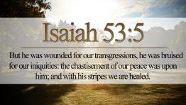Isaiah 53 5 Wallpaper Hd Bible Verses