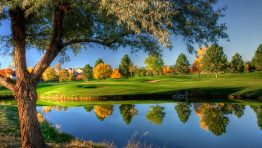 Nature Trees Reflection Lake Wallpaper Hd