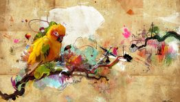 Bird Colorful Artistic Wallpaper Hd