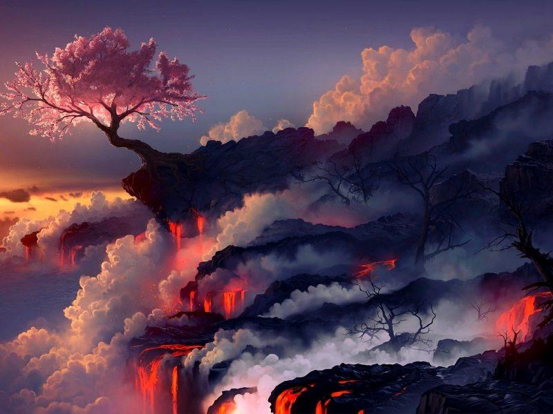 Cherry Blossom Artistic Wallpaper Hd