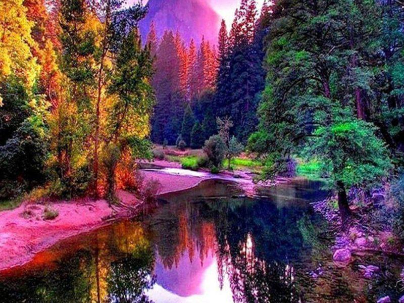 Colorful Trees Lake Scenery Mountainnature Wallpaper Hd