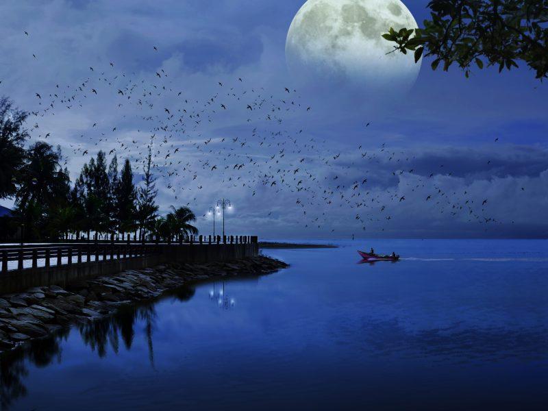 Moon Night Artistic Wallpaper Hd