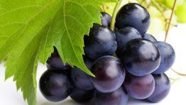 Grapes Wallpaper