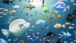 Animal Wallpaper
