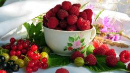 Food Berry Wallpaper