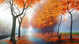 Misty Fall Morning Wallpaper