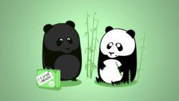 Tanned Panda Wallpaper