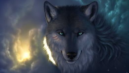 The Wolf Wallpaper